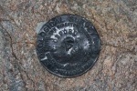 USGS marker on Mt. Oxford